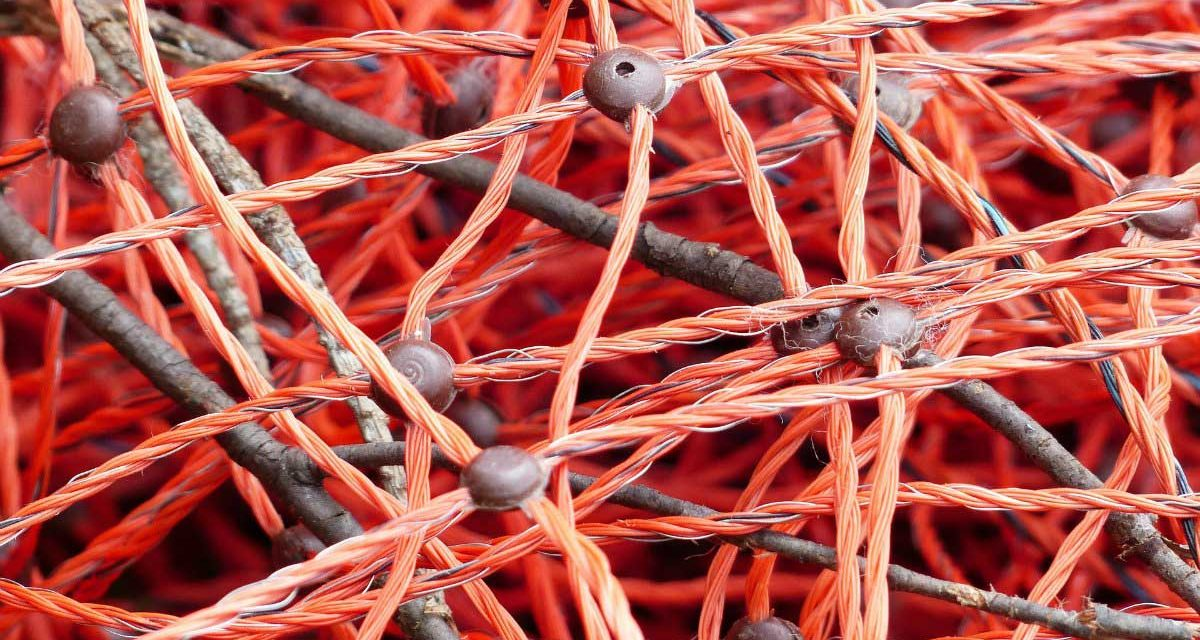 Social media are moving organisations from Hierarchy to Wirearchy