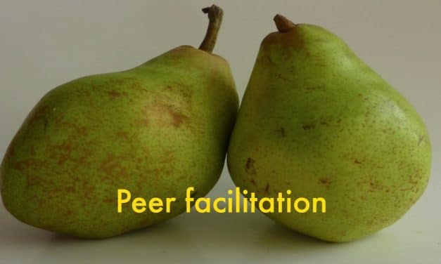 Jij of zij centraal? Hoe je met peer-facilitation betere online discussies krijgt